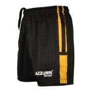 Picture of SG410 Boyne GAA Shorts