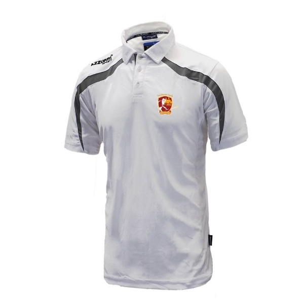 Picture of southern gaels Classic Poloshirt White-Grey