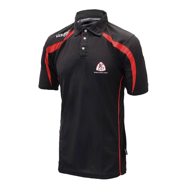Picture of Banteer LGFA Classic Polo Shirt Black-Red