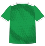 Picture of St Ultans Training Jersey Custom